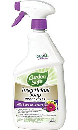 Garden Safe Insecticidal Soap Insect Killer Potassium Salts Of Fatty Acids 1% Rtu 24 Oz - Rtu Insect Soap