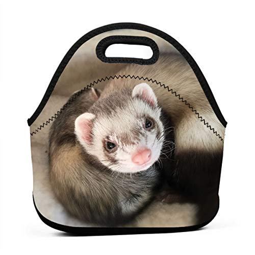 WONDERMAKE Women Men Kids Special Cute Ferret Lunch Bags Insulated Zip Thermal Cooler Bag Portable Meal Package Lunch Box Package Picnic Outdoor Travel Fashionable Handbag Pouch