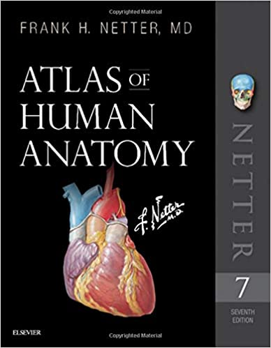 Netter human anatomy atlas download free lovelost.