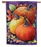 Fall Gathering – 28″ x 40″ Toland Art Banner For Sale