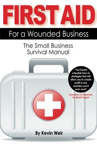 Download First Aid For A Wounded Business: The Small Business Survival Manual pdf