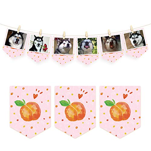 NICROLANDEE Fruit Pattern Banner Wedding Party Decor Paper Garland Banner Tea Party Supplies Bunting Flag for Wedding Baby Shower Bridal Shower First Birthday Festival Home Decoration (Peach 2)