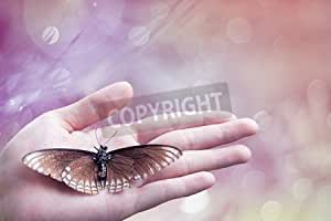Dead Butterfly en Lady mano over Blurred Bokeh Abstract Light Spring Forest Background (Pink Tone), Love Nature, Save The World, (38760671), Póster, 120 x 80 cm