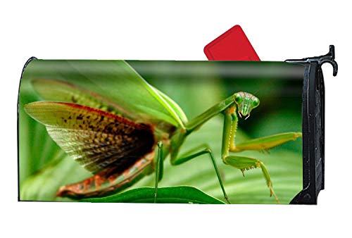 Animal Praying Mantis Spring Magnetic Mailbox Cover Floral Puppy Lane