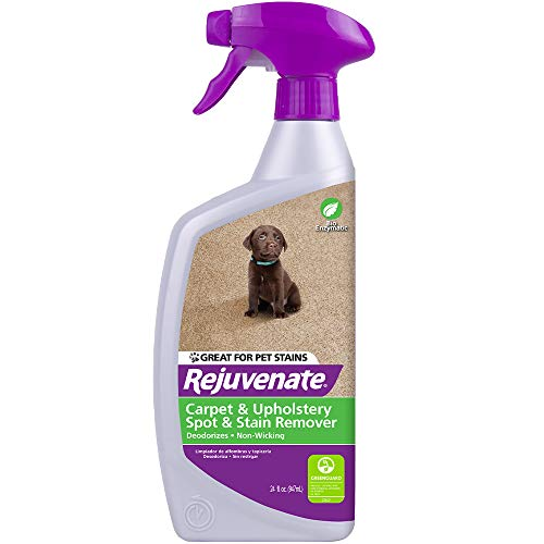 Rejuvenate Bio-Enzymatic Carpet & Upholstery Spot & Stain Remover Simply Spray and Walk Away - Removes Mud, Chocolate, Grass, Pet Stains and More - 24 Ounce