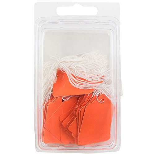 JAM PAPER Gift Tags with String - Mini - 1.75 x 1.09 - Orange - 50/Pack -
