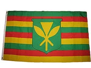 Kanaka Maoli True - Bandera de Estados Unidos con diseño de bandera de Estados Unidos de América, 3 x 5 cm, resistente a los rayos UV, resistente a la decoloración, lona y material de poliéster