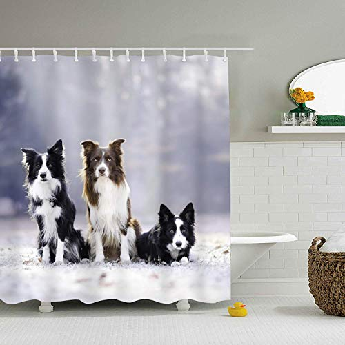 Abaysto Border Collie Bro Creative Polyester Fabric Shower Curtain Sets with Hooks Waterproof Mildew Bathroom Decor Holiday Great Gift