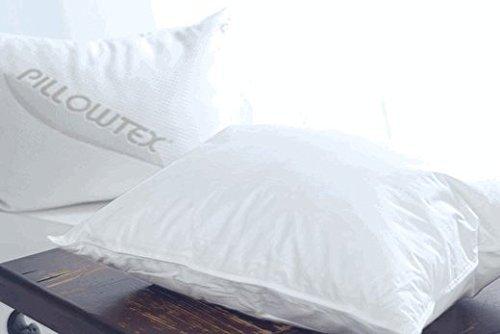Goose Feather 25% White Goose Down Standard Size Pillow ()