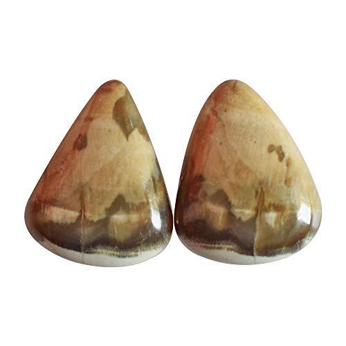RAVISHINGGEMS Attractive Rare Petrified Wood Pair Cabochon, Pear Shape, Size 15x11x4 MM, Jewellery Components, Best Price 17854