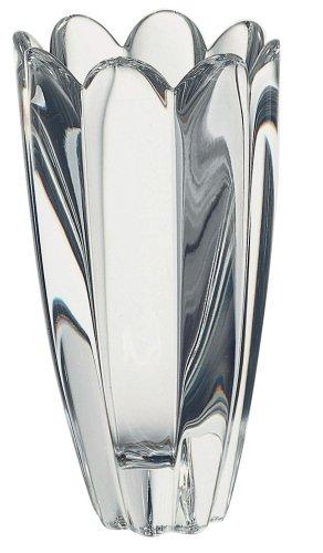 Amazon Orrefors Mayflower 6 12 Inch Small Vase Decorative