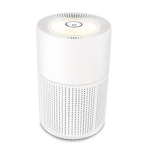 Air Purifiers for Home, 3 Speed Setting with High CADR Value, True HEPA Filter for Pollen Allergies, Smoke, Dust, Pet Hair, Odor Eliminators, Nightlight, Smokers Air Cleaner for Bedroom Offices, White