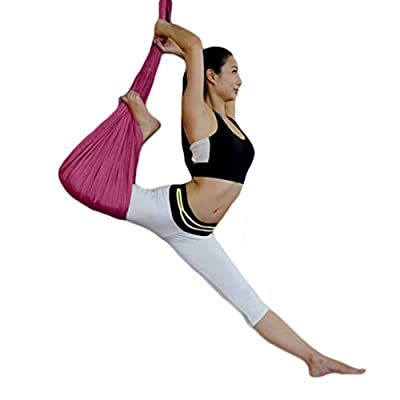 Yoga Trapeze Yoga Flying Swing Yard Pilates Sling Mount Exercises Workouts Aerial Yoga Hammock /Trapeze/Sling for Air Antigravity Yoga Inversion Exercises for Yoga Bodybuilding from WELOVE