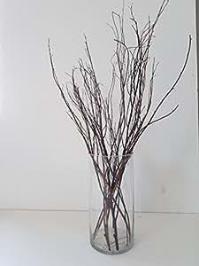 Amazon Com Tall Birch Branches For Vases Decorative