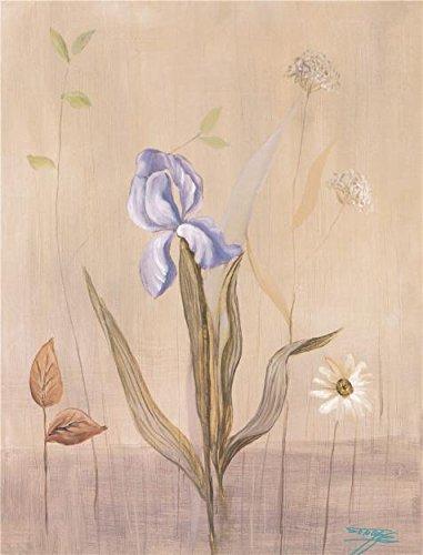 Oil painting ` Purple Iris `印刷ポリエステルキャンバスに、12x 16インチ/ 30x 40cm、The Bestダイニングルーム装飾、ホームギャラリーアートとギフトは、このアート装飾キャンバスプリントの商品画像