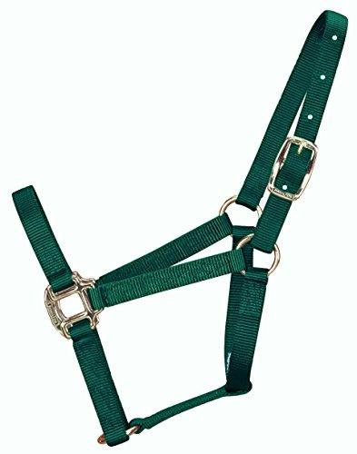 - Hamilton 3/4-Inch Nylon Quality Horse Halter, Weanling or Large Pony, 200-300-Pound, Dark Green