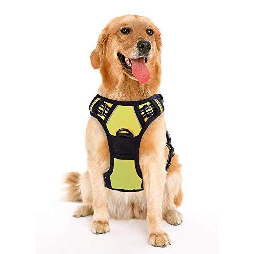 rabbitgoo Dog Harness No-Pull