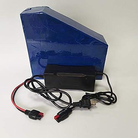 Amazon.com: SUN Li-ion 36V 20AH - Batería de litio ...
