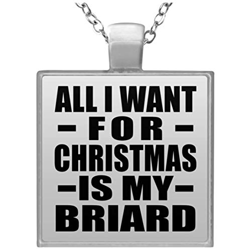 (Designsify Dog Lover Gift, All I Want for Christmas is My Briard - Square Necklace, Silver Plated Charm Pendant, Best Funny Pet Themed Gag Idea for Owner Birthday Bday Xmas Anniversary)