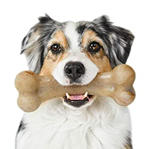 Pet Qwerks Real Bacon Infused BarkBone – Durable Toys for Aggressive Chewers, Tough Indestructible Extreme Power Chewer Bones | Made in USA, FDA Compliant Nylon – for Small Dogs & Teething Puppies