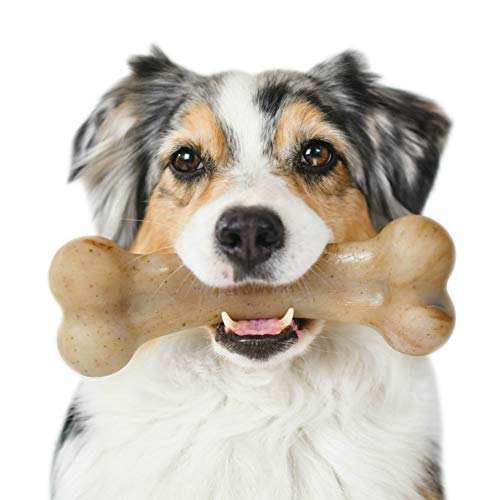 (Pet Qwerks Bacon BarkBone Dog Chew Toys for Aggressive Chewers, Made in USA)