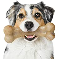 Pet Qwerks Real Bacon Infused BarkBone - Durable Toys for Aggressive Chewers, Tough Indestructible Extreme Power Chewer Bones | Made in USA, FDA Compliant Nylon - for Small Dogs & Teething Puppies