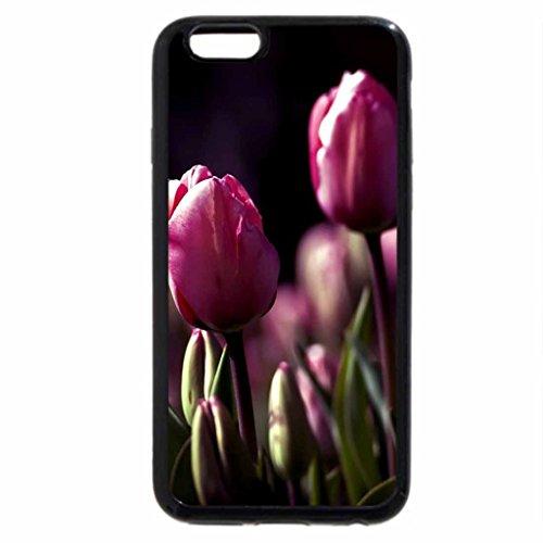 iPhone 6S / iPhone 6 Case (Black) Tulips for No.1 Memeber of DN Jacquelinela