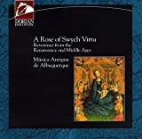 Rose of Swych Virtu