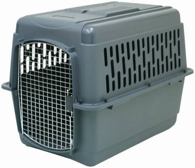 (Petmate Pet Porter Deluxe Small Steel)