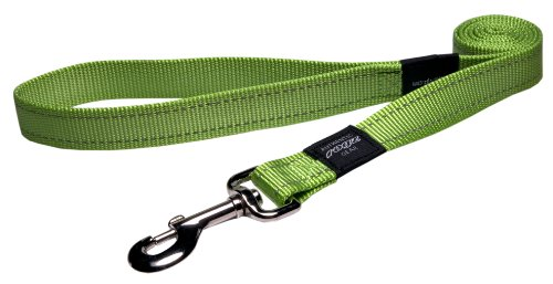 Reflective Leash Extra Large Green
