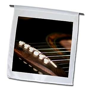 Susans Zoo Crew instrumentos musicales–guitarra acústica Puente Pins Close Up–18x 27inch jardín bandera (FL _ 156190_ 2)