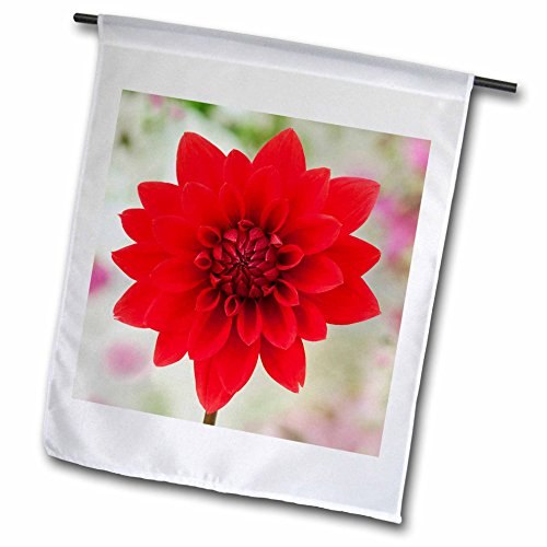 - 3dRose Danita Delimont - Flowers - USA, California. Red dahlia close up. - 18 x 27 inch Garden Flag (fl_278516_2)