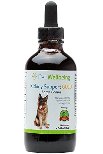 ey Support Gold for Dogs - Natural Support for Canine Kidney Health (4 Ounce) ()