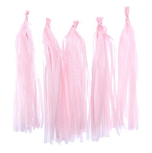 Tassel Garland, Light Pink Tissue Paper Tassels (Set of 5) - Pink Party Streamers, Wedding Decorations, Tassel Party Banners (Yarn Tassel Garland)