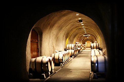 Photo Art Print--Wine Cave with Aged Wooden Barrels by Sun City Art