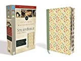 NIV, Cultural Backgrounds Study Bible, Large Print, Leathersoft, Green, Indexed, Red Letter Edition: Bringing to Life the Ancient World of Scripture