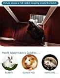 Petsfit Rabbit Hutch Indoor Bunny Cage with Pull