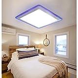SK Flush Mount LED Modern/Contemporary Living Room/Bedroom/Kitchen/Bathroom/Study Room/Office/Kids Room/Garage Metal , 90-240V