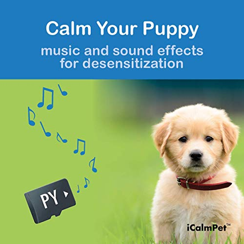 iCalmDog Puppy-Pak | for Calming and Prevention of Noise Phobias and Sound Sensitivities in Younger Canines | Music by Through a Dog's Ear | Micro SD Sound Card