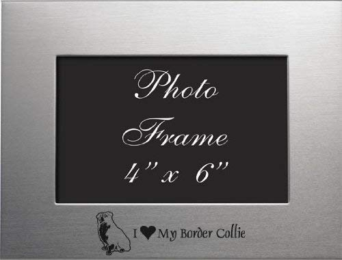 Border Frame Picture Collie - 4x6 Brushed Metal Picture Frame - I Love My Border Collie