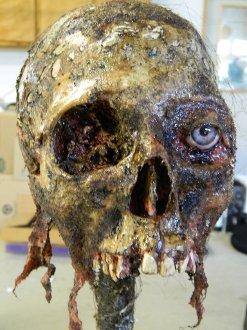 Halloween Horror Movie Prop Human Corpse Skull Head