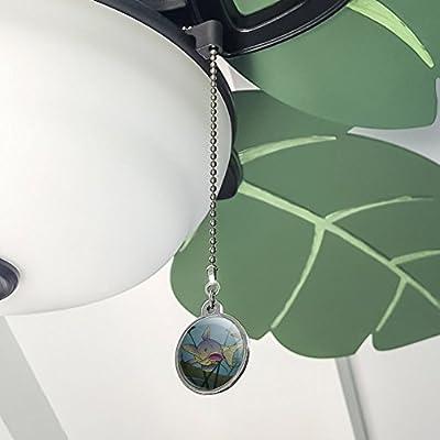 Siluro Nadar en agua ventilador de techo y luz Tire Cadena: Amazon.es: Hogar