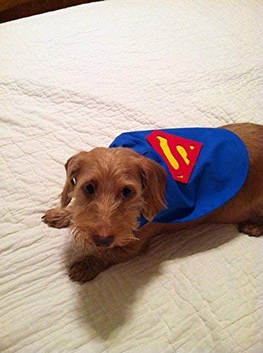 X-Small Dog Superman Super Dog Cape -