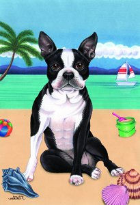 Captivating Boston Terrier   Tomoyo Pitcher Summer Beach Garden Flag