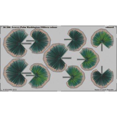 Eduard 1:35 Leaves Palm Washington Filifera Color Photo-Etch Detail Set #36206*