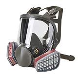 Holulo Full Face Facepiece Respirator Paint Spray Mask with 2 x Organic Vapor Cartridges