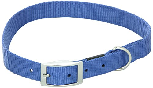 (Dogit Nylon Single Ply Dog Collar with Buckle, Large, 22-Inch, Blue)