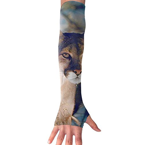 DCJHGN NEW Wild Cougar In Snow Wildlife Mountain Lion UV Protection Cooling For Men Women Running Golf Cycling Driving Protective Gloves