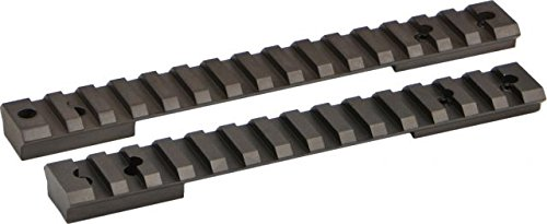 Warne Scope Mounts Remington 1100, 870 Tactical Rail (Remington Tactical 1100)
