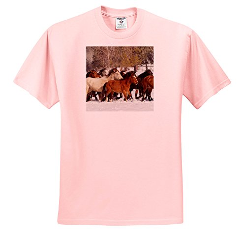 Price comparison product image 3dRose Danita Delimont - Horses - Her Of Wild Horses During Roundup In Winter, Kalispell, Montana - T-Shirts - Youth Light-Pink-T-Shirt XS(2-4) (TS_279168_43)